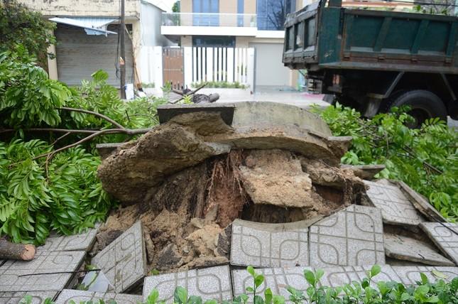 Ảnh hưởng bão số 6: Sạt lở núi chia cắt nhiều tuyến đường, Quảng Ngãi thiệt hại nặng ảnh 4
