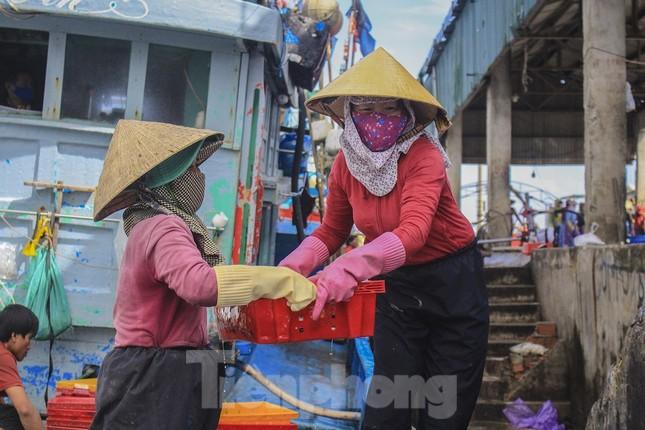 Ngư dân Quảng Ngãi trúng đậm sau chuyến biển xuyên Tết ảnh 13