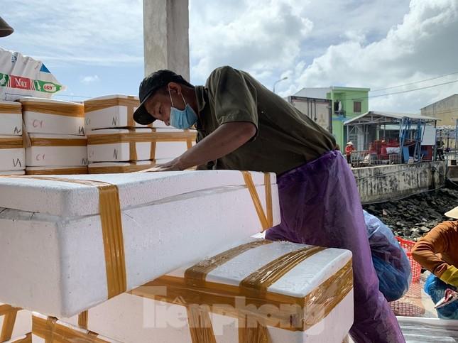 Ngư dân Quảng Ngãi trúng đậm sau chuyến biển xuyên Tết ảnh 10