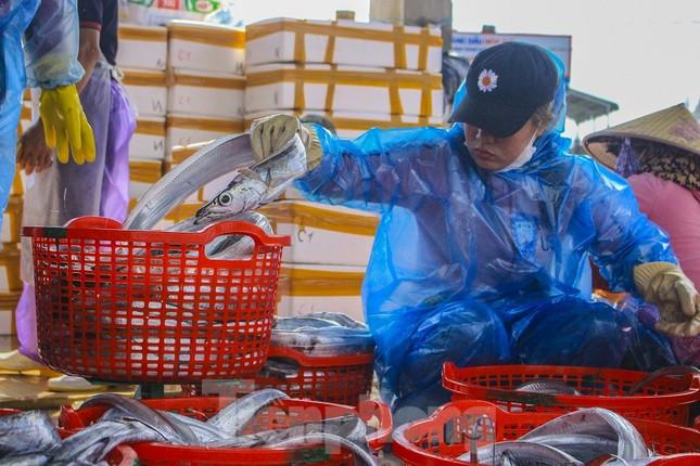 Ngư dân Quảng Ngãi trúng đậm sau chuyến biển xuyên Tết ảnh 6