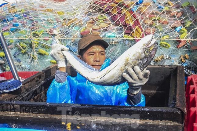 Ngư dân Quảng Ngãi trúng đậm sau chuyến biển xuyên Tết ảnh 17