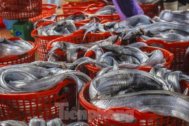 Ngư dân Quảng Ngãi trúng đậm sau chuyến biển xuyên Tết ảnh 4