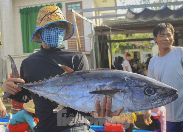 Ngư dân Quảng Ngãi trúng đậm sau chuyến biển xuyên Tết ảnh 16