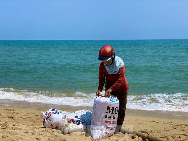 Ngư dân bỏ túi tiền triệu mỗi ngày nhờ cào 'lộc biển' ảnh 5