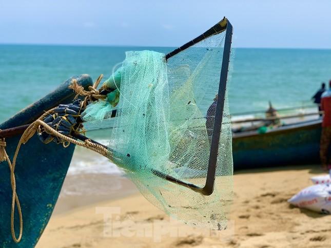 Ngư dân bỏ túi tiền triệu mỗi ngày nhờ cào 'lộc biển' ảnh 3
