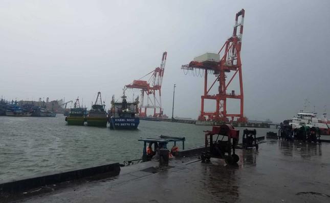 Bình Định chỉ đạo sơ tán người dân vùng trũng trước dự báo bão đổ bộ ảnh 1