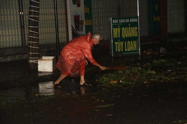 Sau bão số 5, cây cối đổ ngổn ngang, bãi biển Quy Nhơn ngập ngụa rác ảnh 1