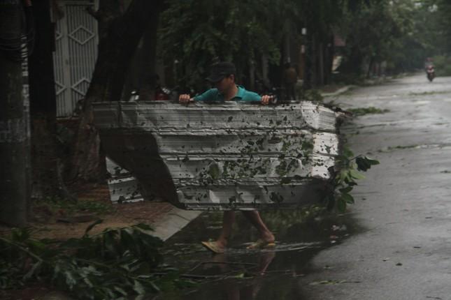Sau bão số 5, cây cối đổ ngổn ngang, bãi biển Quy Nhơn ngập ngụa rác ảnh 2