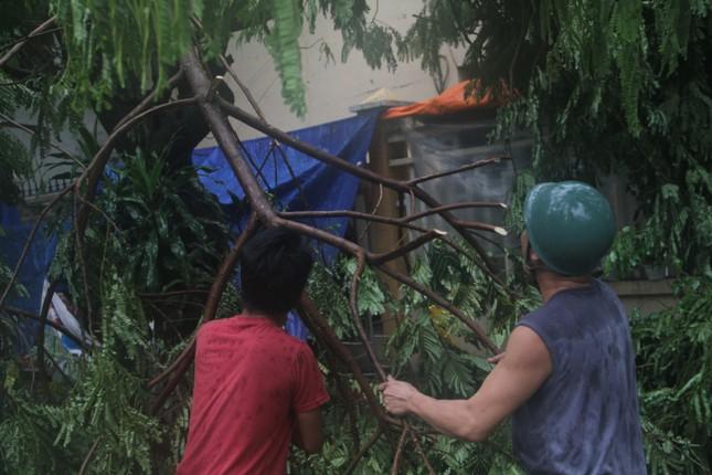 Sau bão số 5, cây cối đổ ngổn ngang, bãi biển Quy Nhơn ngập ngụa rác ảnh 6