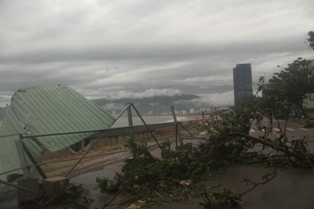 Sau bão số 5, cây cối đổ ngổn ngang, bãi biển Quy Nhơn ngập ngụa rác ảnh 10