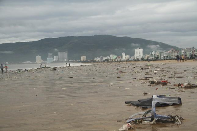 Sau bão số 5, cây cối đổ ngổn ngang, bãi biển Quy Nhơn ngập ngụa rác ảnh 11