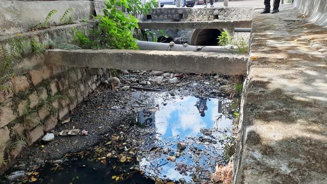Khu dân cư ở Bình Định khốn đốn vì nước thải ô nhiễm ảnh 2
