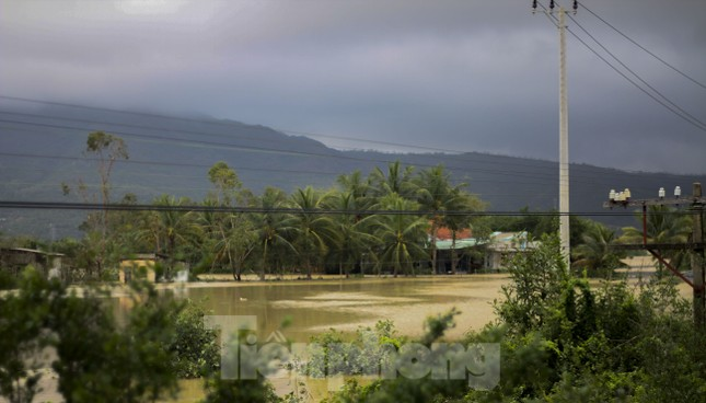 Lũ dâng nhanh, đường phố Quy Nhơn thành sông, hơn 500 hộ dân bị ngập ảnh 7