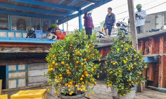 'Mang Tết' ra đảo Cù Lao Xanh ảnh 9