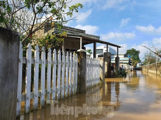 Bão số 9 vừa tan, người Đà Nẵng lại lo chạy lụt ảnh 5