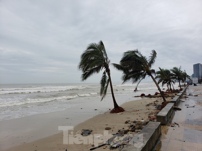 Bờ biển Đà Nẵng ngổn ngang, kè sông sụt lún vì bão số 13 ảnh 12