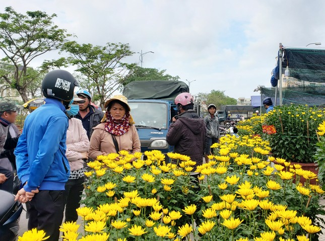 Hoa Tết rực rỡ xuống phố, người mua vẫn thưa thớt ảnh 8