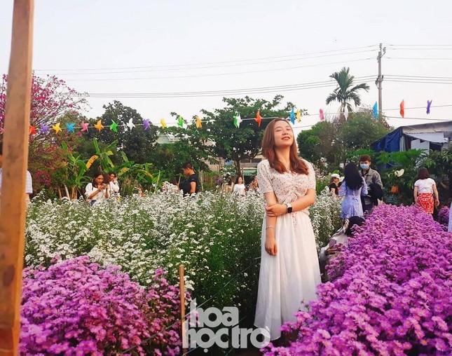 """Teen Đà Nẵng, bạn đã check-in khu vườn """"tím lịm tìm sim"""" giữa lòng thành phố chưa? ảnh 3"""