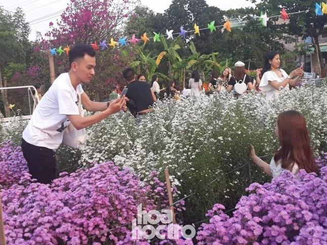 """Teen Đà Nẵng, bạn đã check-in khu vườn """"tím lịm tìm sim"""" giữa lòng thành phố chưa? ảnh 4"""