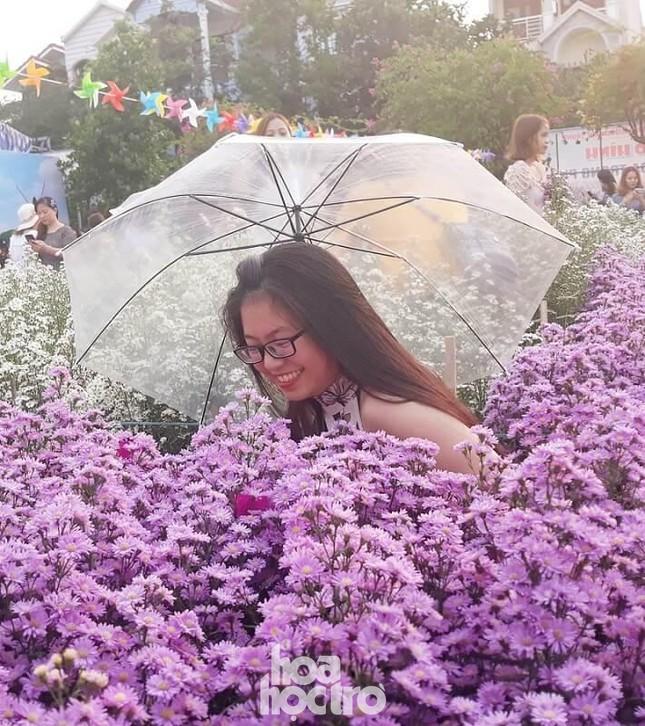 """Teen Đà Nẵng, bạn đã check-in khu vườn """"tím lịm tìm sim"""" giữa lòng thành phố chưa? ảnh 5"""