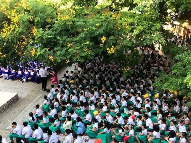 Quảng Nam cho học sinh đi học trở lại, lịch kiểm tra cuối học kỳ II được thay đổi  ảnh 1