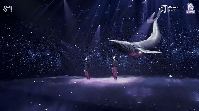 """TVXQ chứng tỏ sức hút mãnh liệt theo năm tháng trong concert online """"Beyond The T"""" ảnh 4"""