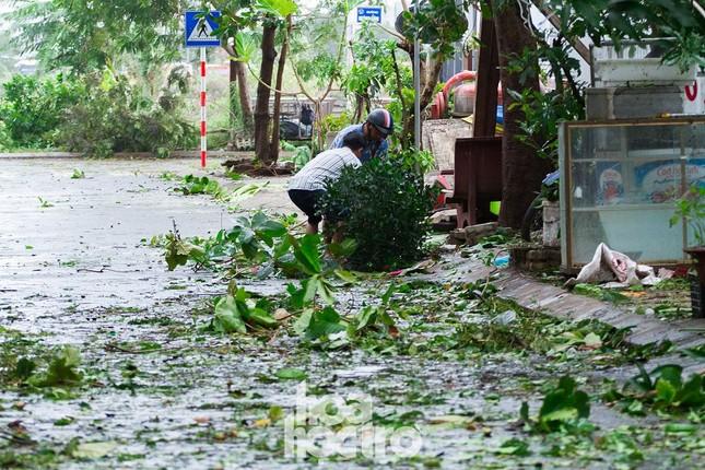 Đà Nẵng sau cơn cuồng phong bão số 9: Mỗi người một tay dọn dẹp cảnh ngổn ngang ảnh 1