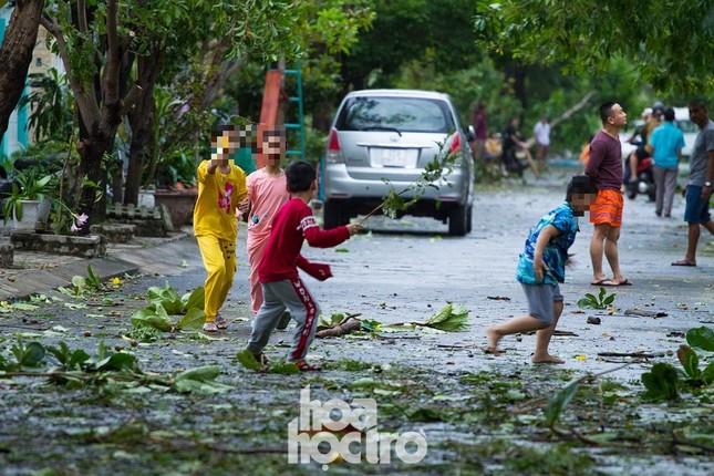 Đà Nẵng sau cơn cuồng phong bão số 9: Mỗi người một tay dọn dẹp cảnh ngổn ngang ảnh 11
