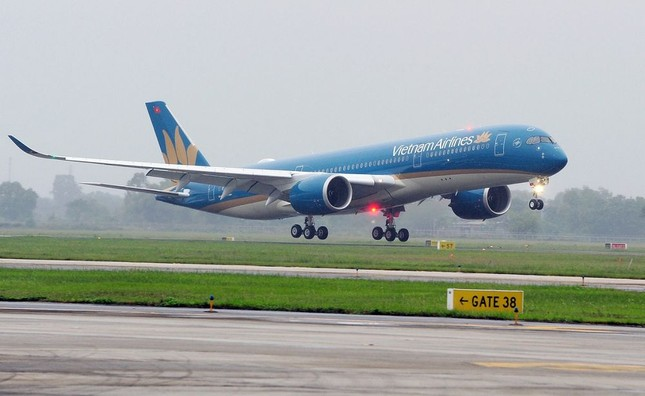 Đà Nẵng: Dừng lưu thông cầu, tạm đóng cửa sân bay để phòng tránh bão số 13 ảnh 3