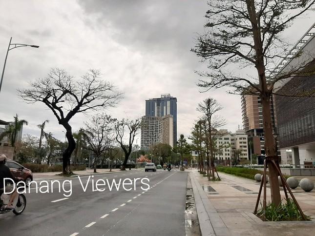 Dù khá ngổn ngang nhưng thành phố Đà Nẵng đã bình yên sau khi bão số 13 đi qua ảnh 5