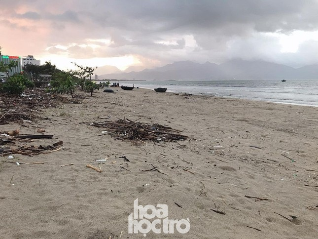 Bão số 13 đã qua từ lâu nhưng bãi biển Đà Nẵng vẫn còn nhếch nhác vì rác ảnh 5