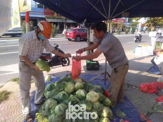 """Hàng chục tấn nông sản Hải Dương được người dân Đà Nẵng chung tay """"giải cứu"""" ảnh 2"""