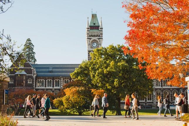Lộ trình du học mùa dịch không thể bỏ qua: Ngồi nhà, nhận học bổng vào đại học top! ảnh 1