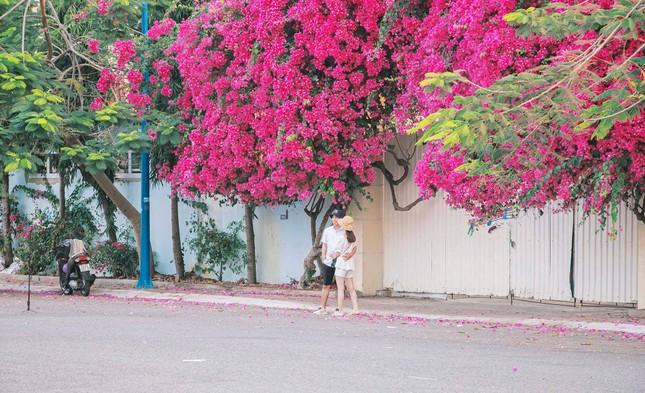 Teen Vũng Tàu hẹn hò nhau đi chụp hình check-in tại con đường hoa giấy đẹp ná thở ảnh 2