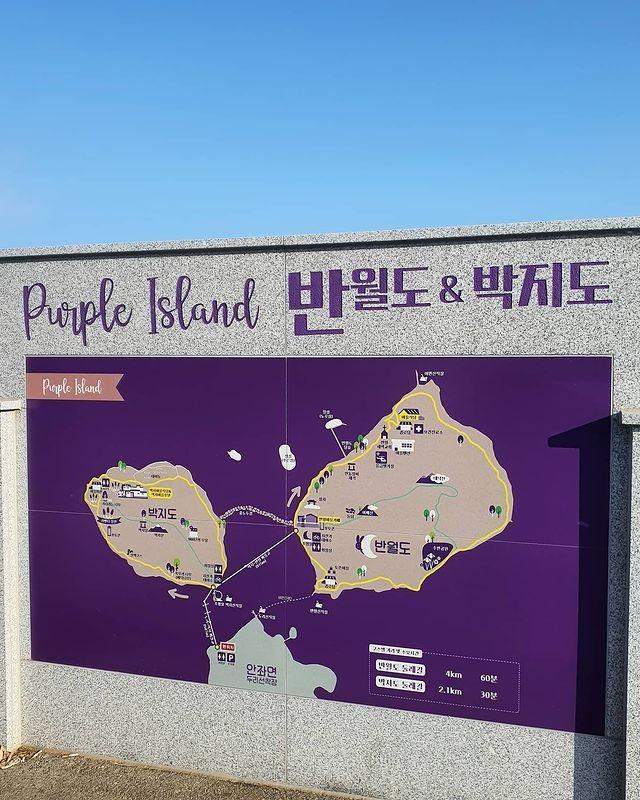 """Có gì hấp dẫn ở đảo Banwol - hòn đảo """"tím lịm tìm sim"""" ở phía Nam Hàn Quốc? ảnh 2"""