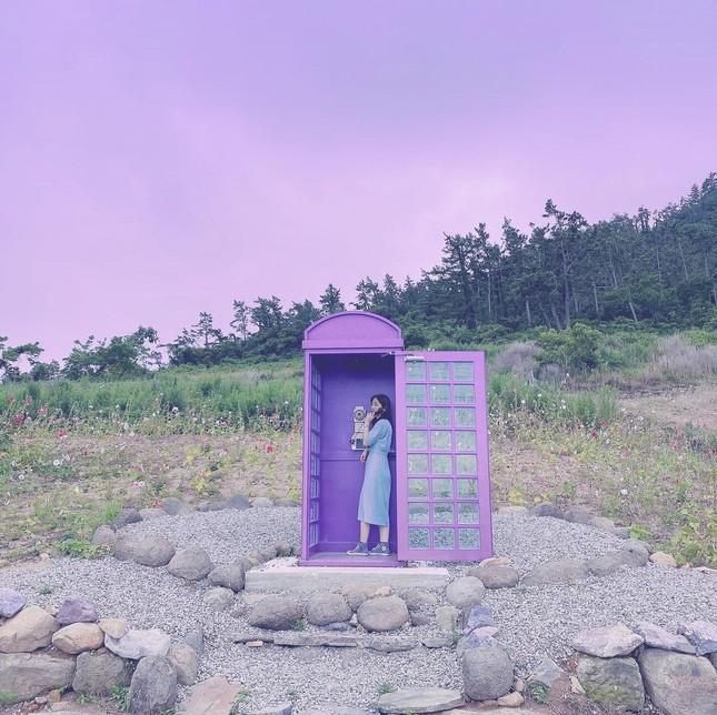 """Có gì hấp dẫn ở đảo Banwol - hòn đảo """"tím lịm tìm sim"""" ở phía Nam Hàn Quốc? ảnh 3"""