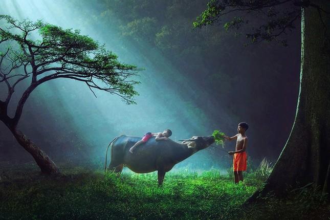 Cuộc thi viết Trà sữa cho tâm hồn: Những ống bơ mùa Đông ấm mãi tuổi thơ tôi ảnh 1