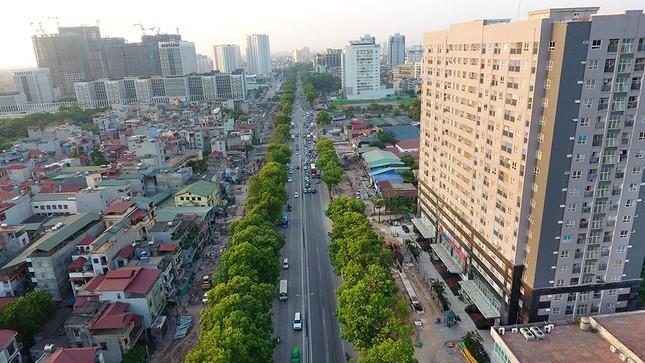 Con đường có 1300 cây xà cừ trong những ngày nắng nóng đỉnh điểm ảnh 9