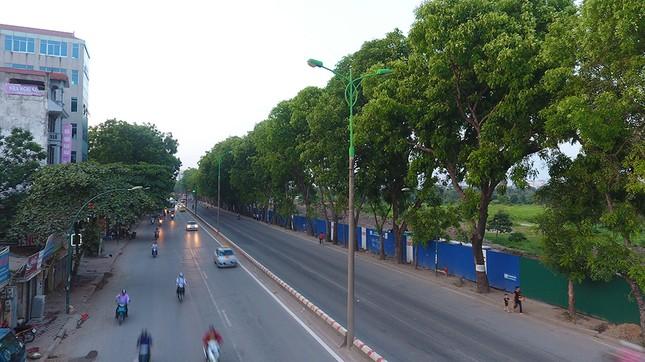 Con đường có 1300 cây xà cừ trong những ngày nắng nóng đỉnh điểm ảnh 14