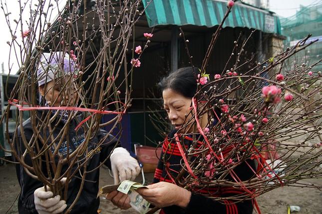 Đào Nhật Tân 'bung lụa' đón Tết sớm ở chợ hoa Hà Nội ảnh 5