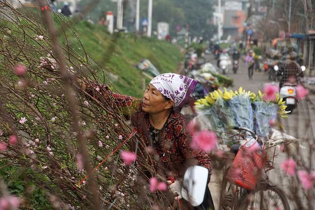 Đào Nhật Tân 'bung lụa' đón Tết sớm ở chợ hoa Hà Nội ảnh 9