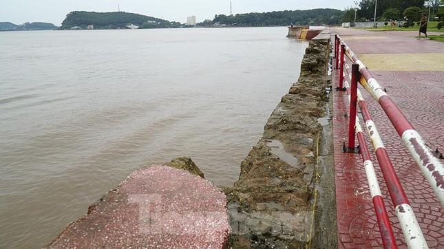[ẢNH] Hải Phòng cấm biển trước bão số 3 từ chiều tối ảnh 6