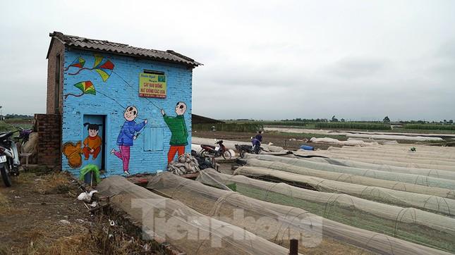 Mãn nhãn với làng bích họa siêu thực ngay tại Hà Nội ảnh 13