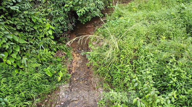 Toàn cảnh nhà máy nước sông Đà, nơi nguồn nước sạch cho Thủ đô đang bị đe dọa ảnh 5