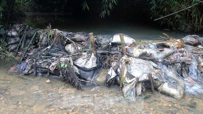 Toàn cảnh nhà máy nước sông Đà, nơi nguồn nước sạch cho Thủ đô đang bị đe dọa ảnh 6