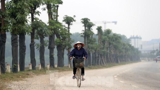 Hàng hoa sữa chuyển từ Hà Nội lên bãi rác Nam Sơn giờ ra sao? ảnh 7