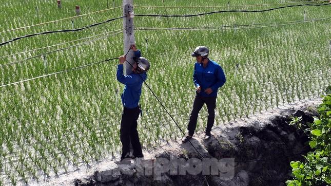 Đội nắng lắp đường truyền siêu tốc độ cho Tiền Phong Marathon ảnh 1