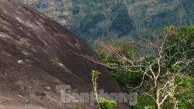 Tận thấy 'Đá Voi Mẹ' hùng vĩ giữa núi rừng Buôn Ma Thuột ảnh 3