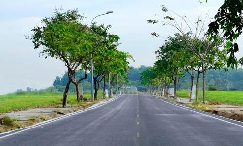 Giải mã cơn sốt gom mua đất bằng mọi giá của người Việt ảnh 1