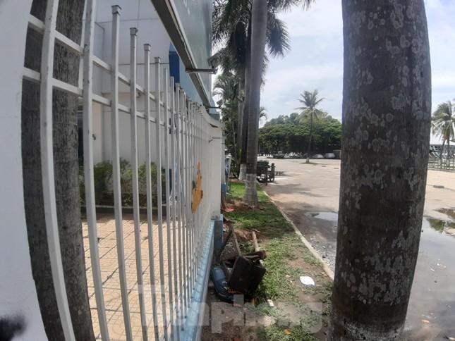 Đà Nẵng tính trả tiền để chuộc lại đất công viên 29/3 đã bán cho doanh nghiệp ảnh 5